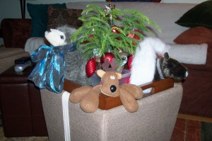 What do you get your moose for xmas?